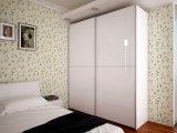 De hoge Glanzende Garderobe van de Schuifdeur met Uitstekende kwaliteit (wd-1254)