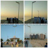 luz de calle solar integrada al aire libre elegante de 100W LED con teledirigido