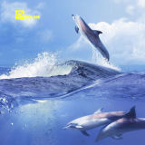 Brillante 3D de Pringting Cerámica Azulejo De Foshan Oceanlandceramics