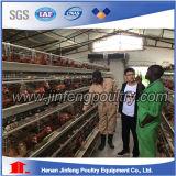 Cage chaude de poulet de volaille de couche de vente de ferme de poulet du Kenya