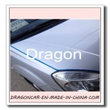 Protezione decorativa del bordo del portello di automobile di figura di U
