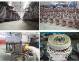 2 Tonne Niedrig-Durchfahrtshöhe Materialtransport-anhebende Handkurbel-elektrische Kettenhebevorrichtung