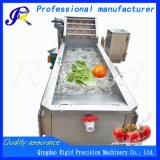 De Wasmachine van het Roestvrij staal van de Machines van de Groente van het fruit