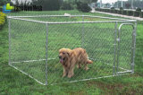 Fábrica barata dos canis do cão da ligação Chain das vendas quentes