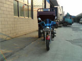 Disco Brake Gasoline Cargo Tricycle con Highquality Sy150zh-C10