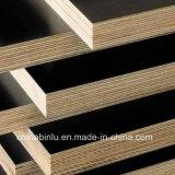 La película hizo frente a alta calidad de la madera contrachapada 1200 2400m m y al mejor precio