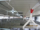 De Chinees Kooi van de Kip van de Apparatuur van het Gevogelte van Lage Kosten Automatisch en het Drinken Systeem (xgz-GR024)