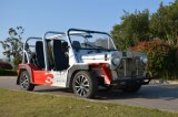 Elektrischer Hochgeschwindigkeitsstrand-besichtigenauto
