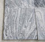 De Tegels 60*60 van het Graniet van China Juparana