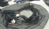 Cage de flottement de pisciculture de cage de pêche pour la mer Aquaculature