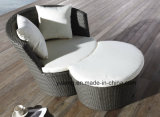 Sofá ao ar livre do jardim da mobília do lazer confortável ajustado com assento de Single&Double (YT459)