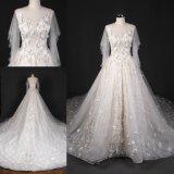 투명한 소매 다채로운 저녁 신부 드레스 결혼 예복 Lt7513