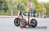 Elevadores eléctricos de Scooter 500W 48V 3 Rodas Scooter eléctrico