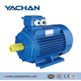 세륨 Approved 0.12kw-315kw Y2 Series Three Phase Asynchronous Electric Motor