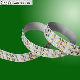 SMD 3528 LED Doppia Linea 240LEDs / M con Cct Dimming