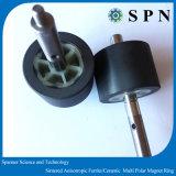 Rotore anisotropo multipolare di integrale del magnete ferrito di ceramica/permanente