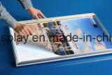 Het Profiel van het Frame van het Aluminium van de reclame voor Lichte Doos