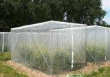 UV 보호 반대로 꿀벌 그물 (ABN065)