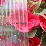 vetro modellato di prezzi poco costosi di 3-6mm per costruzione