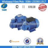 Qb90 1kw Best Water Pump Motor