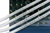 Macchina della marcatura del laser della fibra di Ipg per l'indicatore d'argento dorato dei monili