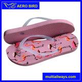 Beste Qualitätsreizende Drucken PET Fußbekleidung für Mädchen