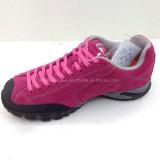De nieuwe Tennisschoen die van de Vrouwen van de Manier van de Stijl Schoenen beklimt die Schoenen (ws16126-3) wandelen