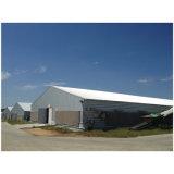 Casa de galinha pré-fabricada comercial das aves domésticas do projeto profissional