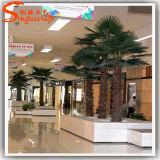 Отель расположен непосредственно на заводе оформление искусственных Palm Tree растений