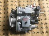 Bomba de combustible de Cummins (4951495) para el motor de Cecec (Nt855 K19 M11 K38)