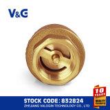 Válvula de retención de bronce de latón de acero inoxidable (VG12.90081)