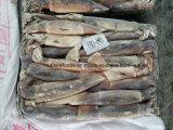 200-300 Kalmar von China