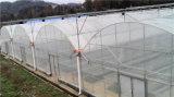 Película de plástico para la siembra de hortalizas de gases de efecto invernadero