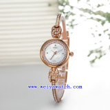Hot Vogue occasionnel personnalisé de vente de montres (WY-010E)