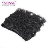 Tessuto dei capelli umani dell'onda del corpo dei capelli umani dei commerci all'ingrosso 100%
