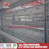 Ethiopia Layer Chicken Farm Poultry Equipment for Knows them
