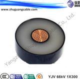 중간 전압 PVC에 의하여 격리되는 고압선