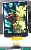 De witte en Zwarte LCD Module van de Vertoning voor Telefoon