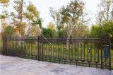 Résidentiel décoratifs délicat de clôtures en acier galvanisé industrielle