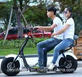 2017熱い販売の電気オートバイ都市ココヤシの工場製造でなされる電気自転車のスクーター