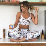 El sujetador y las polainas al por mayor de los deportes de la yoga de la manera fijaron la ropa de deportes de las mujeres