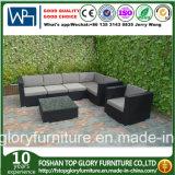 Insieme esterno di vimini della mobilia del sofà del giardino del rattan del PE di Viro
