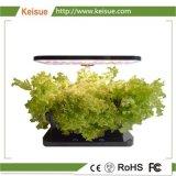 花または葉野菜のためのKeisue表のHydroponic成長する機械