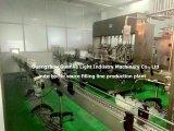 Bouteille de machine de remplissage automatique de la sauce avec un remplissage complet de la production de ligne