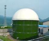 Biogas-Pflanze des Biogas-Digestor-464m3 Cstr