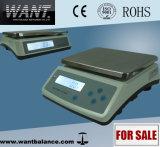 Affichage LCD Balance électronique