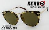 Cat Eye солнечные очки со специальным наконечником храма Kp70390