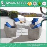 Patio chaise de salle à manger avec coussin ensemble à dîner en rotin chaise de salle à manger de tissage en osier osier de loisirs de plein air Président Table à manger moderne