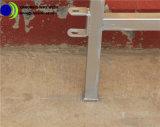 Recinzione poco costosa galvanizzata del bestiame del tubo del quadrato del metallo
