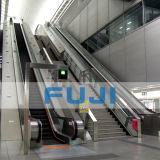 La Giappone-Cina aderisce alla scala mobile di FUJI di impresa da vendere
